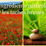 Quels ingrédients naturels pour faire disparaître vos taches brunes ?