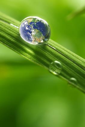 Huiles Hydratantes à travers le monde