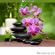 Enfin, optimisez l'utilisation de vos huiles cosmétiques avec la Web-Appli «My Personal Formula.net»