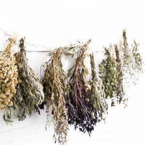 herbes séchées