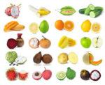 Aliments qui repigmentent la peau, pour les taches blanches
