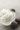 Beurre de Karité pour Savon