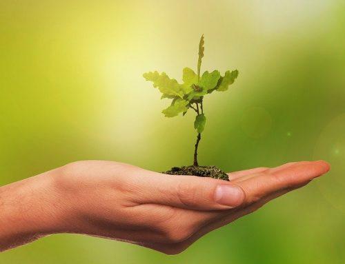 Nouveau : Vous aussi soyez porteur de solutions et d'espoir