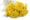 bouquet de fleurs d'Hélichryse jaune