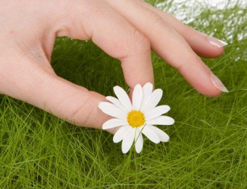 Comment fortifier vos ongles grâce aux huiles végétales !