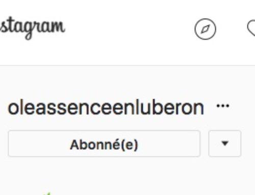 Et si vous rejoigniez Oleassence sur Instagram ?